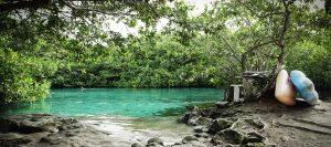 Buceo o Snorkel en Cenotes