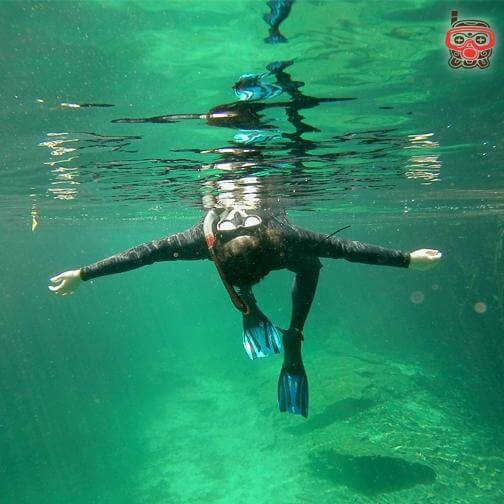 cenote snorkel tour