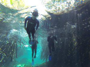 snorkel in Casa Cenote