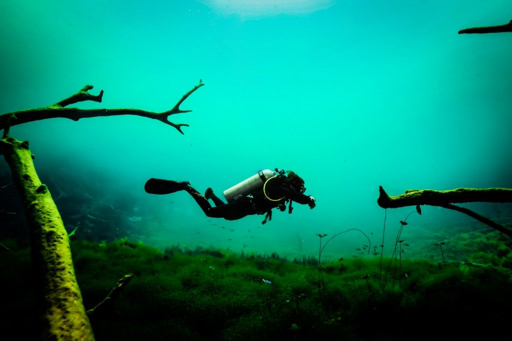 Cenote Carwash diving