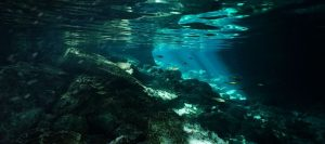 Dos ojos cenote crystal blue waters