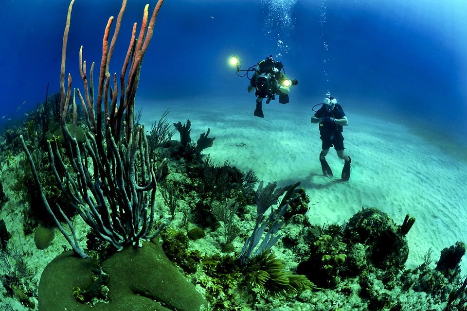 Playa del Carmen Scuba Diving5