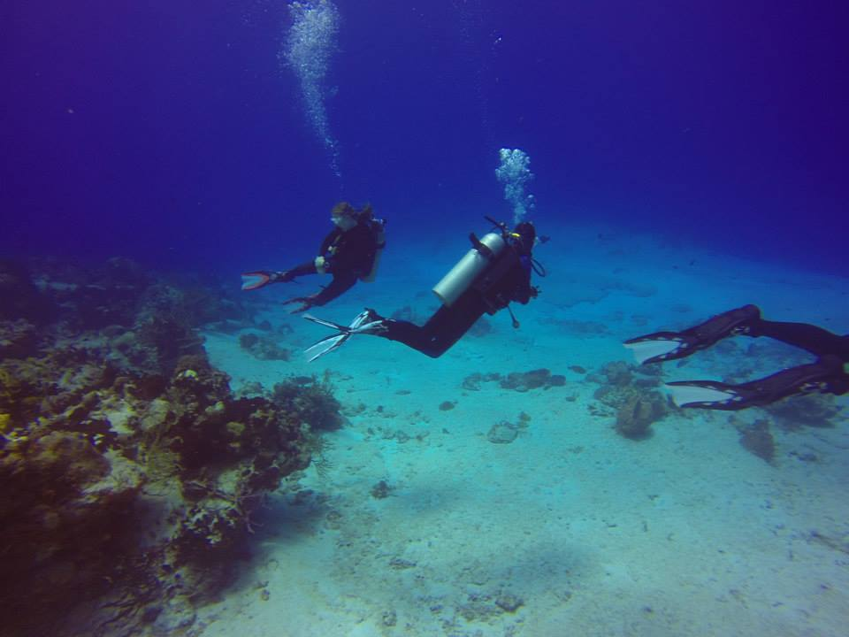 Cozumel Scuba Diving