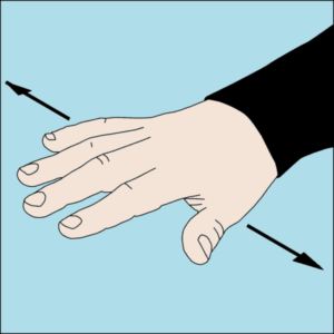 Dive hand signal Level out