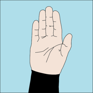 Dive hand signal Stop