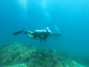 Puerto Morelos Reef Diver