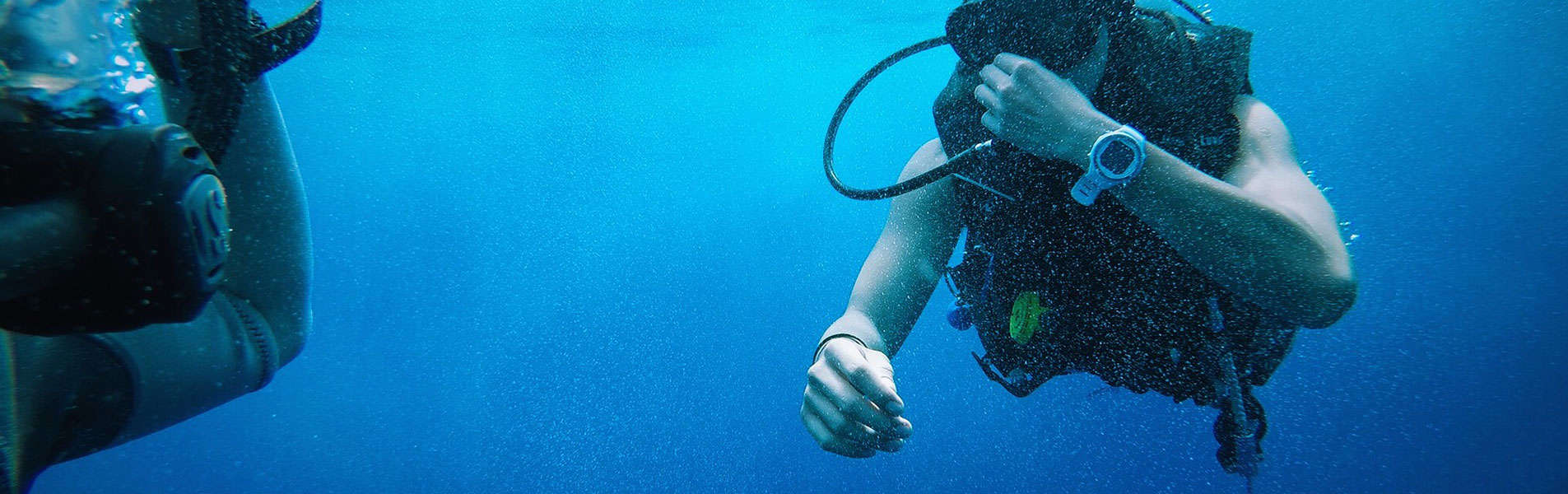 Diver with dive watch