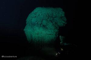 Kin Ha Cenote